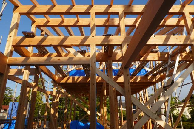 建て方2日目、屋根の垂木を据付中